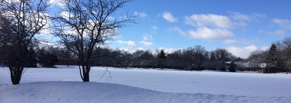 2016년 1월 눈온 겨울과 파란 하늘